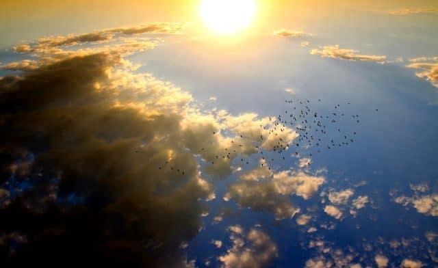 Munay-Ki inwijdingen: voor de wereld na 2012