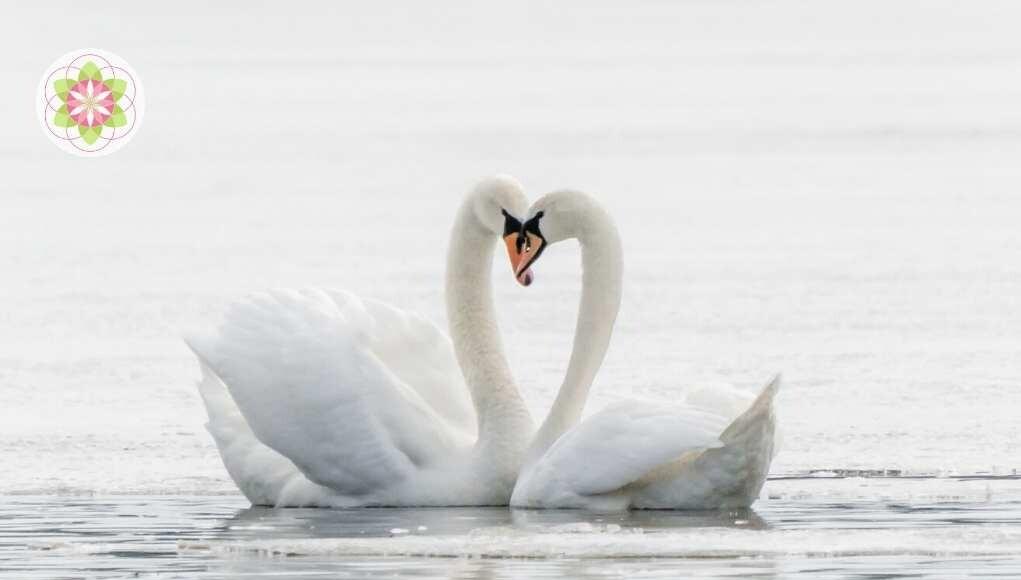 De ziel zoekt zijn weg naar verbinding en liefde