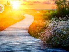 Hoe overleef ik mijn transformatieproces?