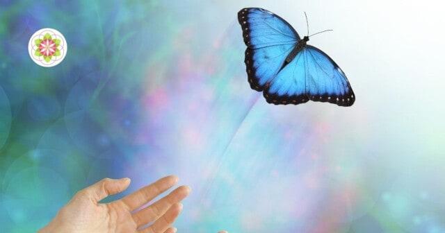 Hoe transformeer je pijn