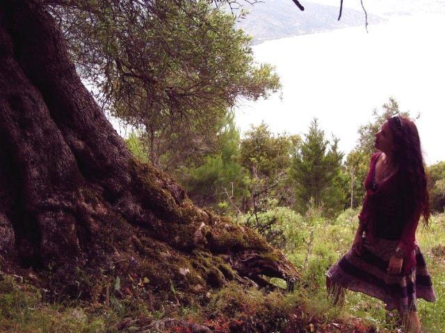 Een (on)gewoon gesprek met bomen