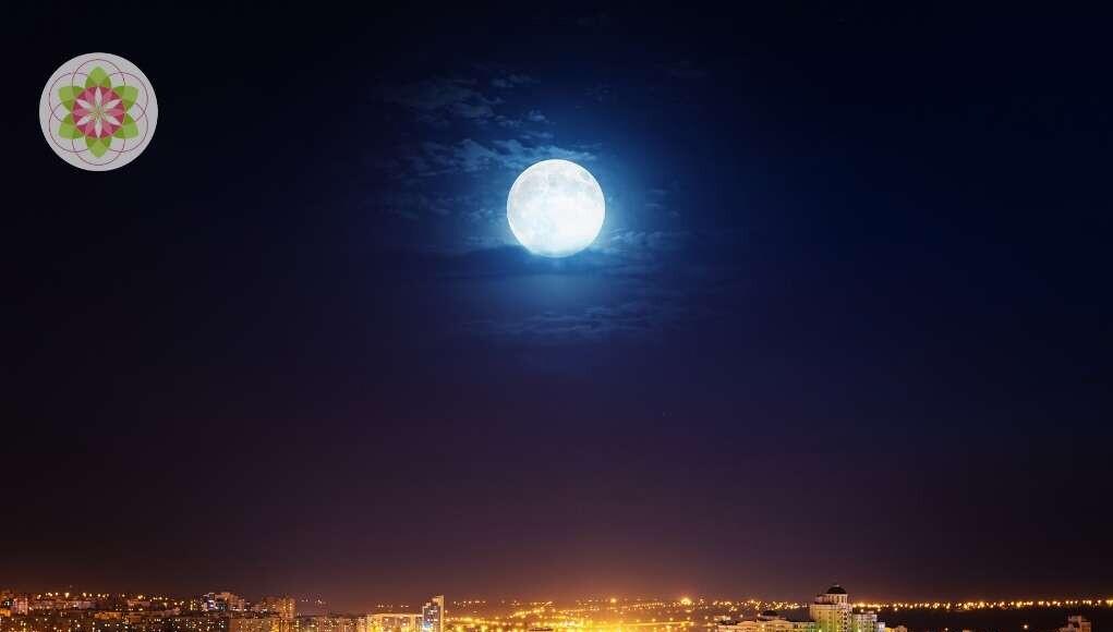 De nacht als parallel bestaan- wat gebeurt er als je slaapt?
