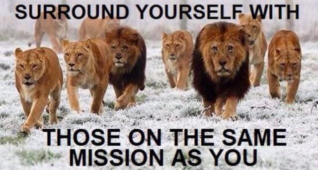 Omring jezelf met degenen met dezelfde missie als jij