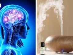 Dit doet het verstuiven van essentiële oliën met je hersenen