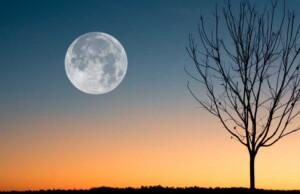 Volle Maan in Boogschutter 17 juni 2019