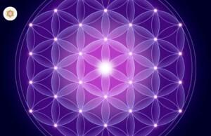Het geheim van de werking van het Universum bevindt zich in de geometrie. Wat is de Levensbloem