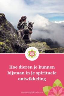 Hoe dieren je kunnen bijstaan in je spirituele ontwikkeling