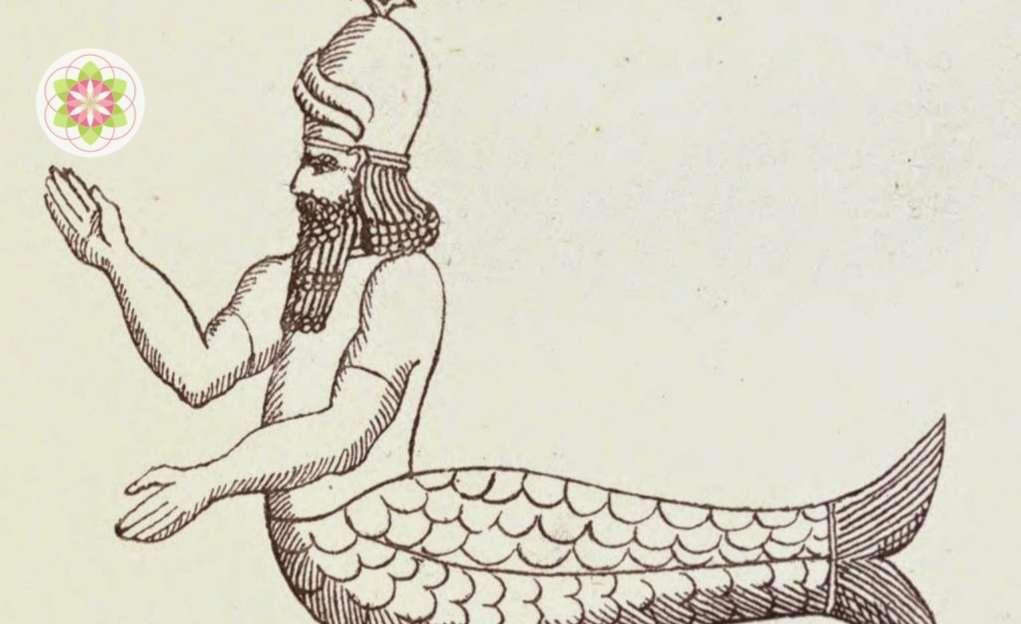Waarom zeemeerminnen waarschijnlijk echt bestonden