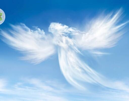 Waken Engelen over onze wereld?