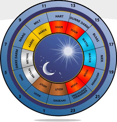 orgaan klok- lichaamsklok- iedere nacht op zelfde tijdstip wakker