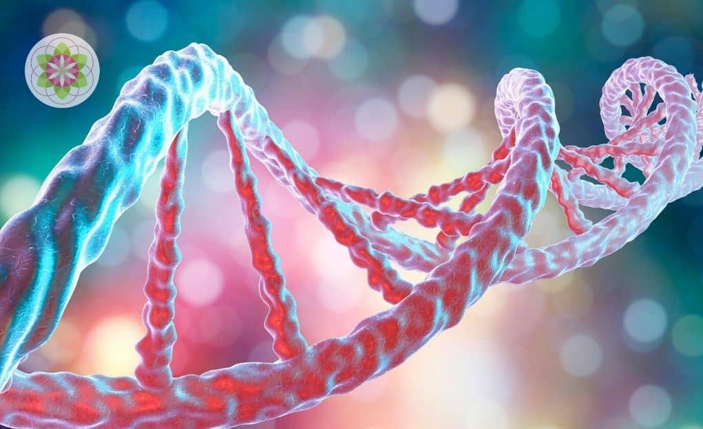 Lemuriaans bewustzijn in ons DNA