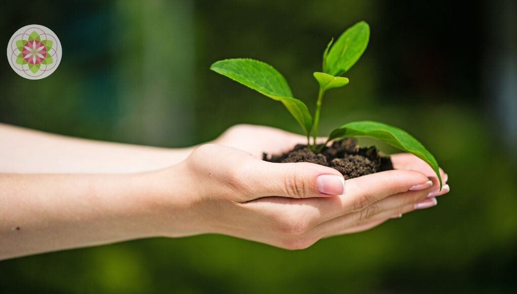 5 simpele manieren om je dag net wat duurzamer te maken