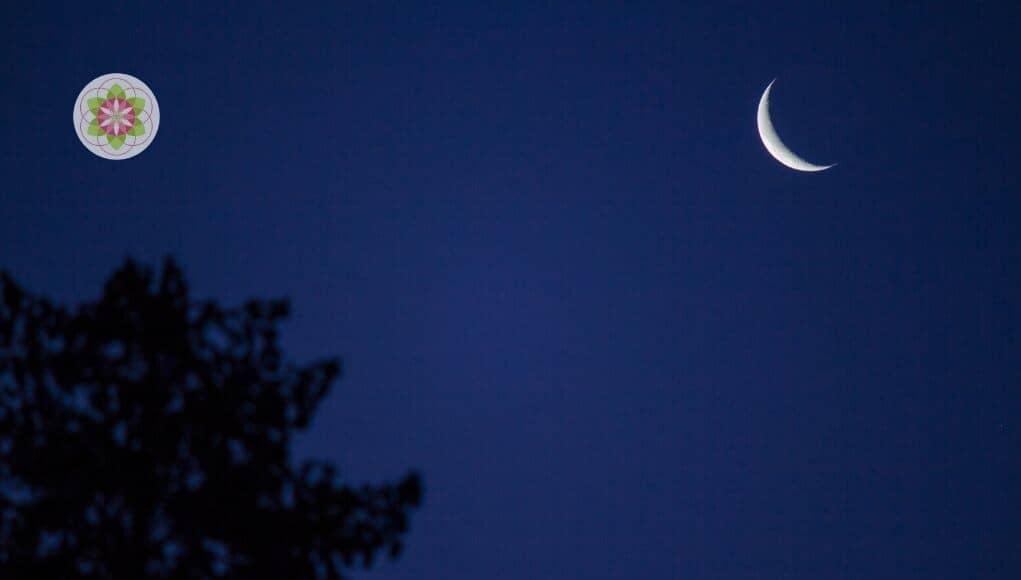 nieuwe maan 24 januari