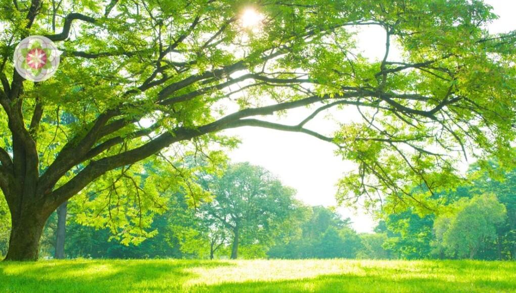 Willen we op een duurzame manier verder leven of kiezen we voor een leven gericht op puur eigenbelang?