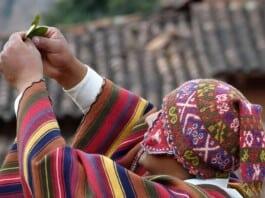 Peruaanse sjamanen jou kunnen leren over energetische overbelasting