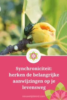 Synchroniciteit: herken de belangrijke aanwijzingen op je levensweg