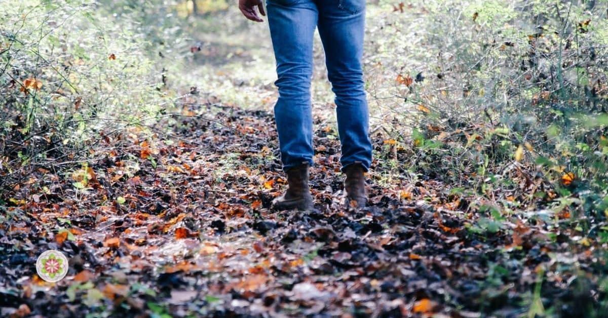 Bindingsangst en wat de Kwetsbare Godinnen je kunnen leren