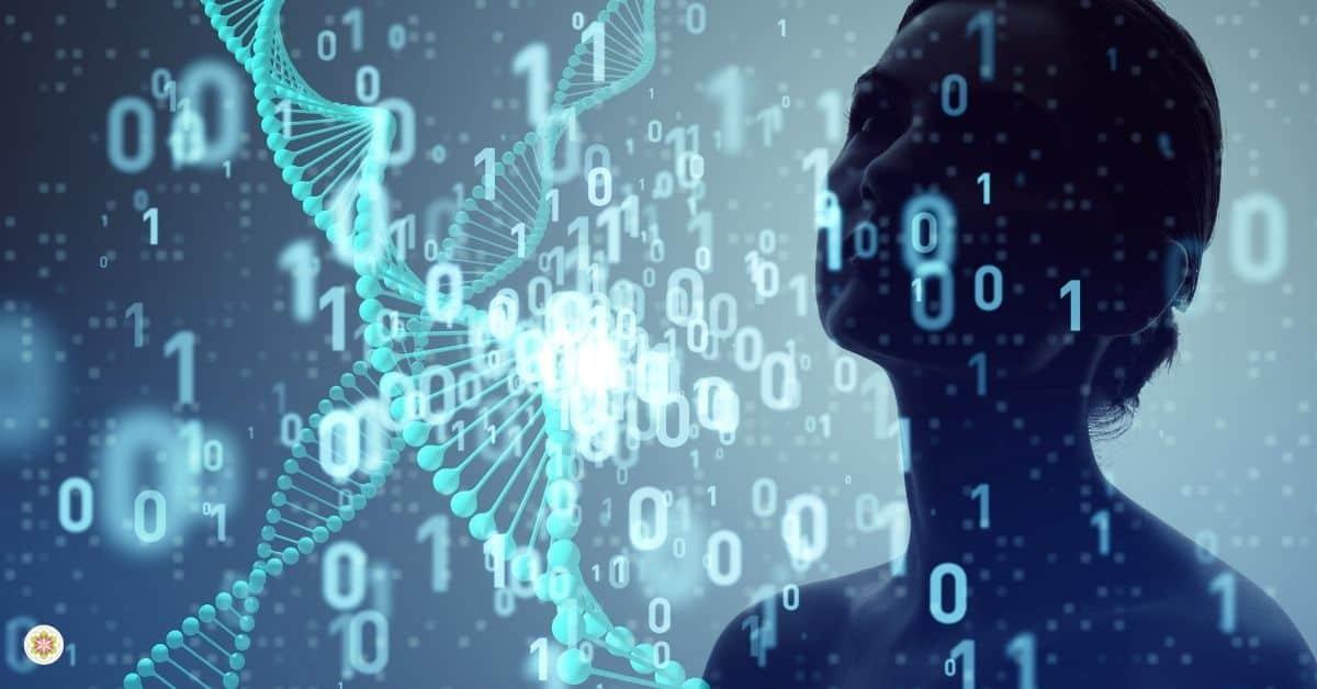 genen & DNA veranderen met je gedachten