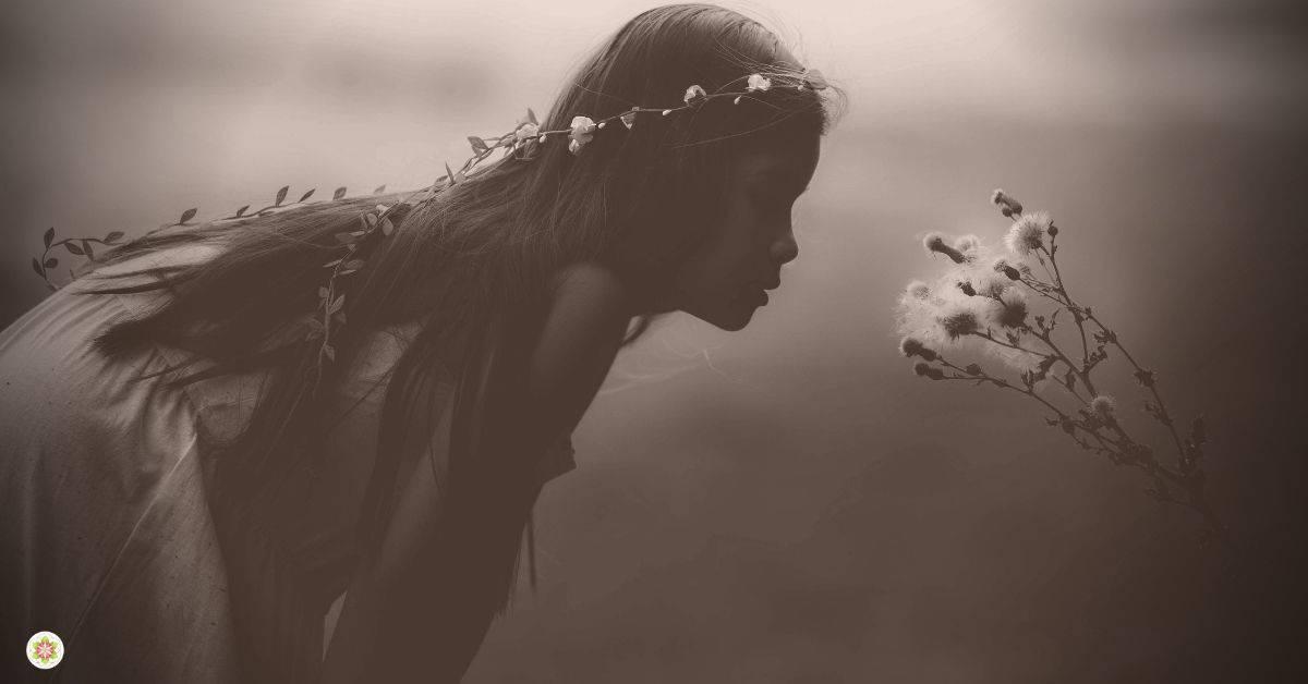De kracht van Hier - Je ziel als ware thuis (3)