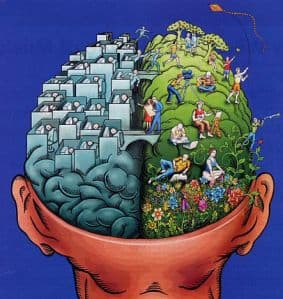 linker -en rechter hersenhelft